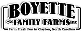 Boyette Vinyards Logo